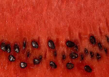 Fruit background texture of watermelon pulp with bones.