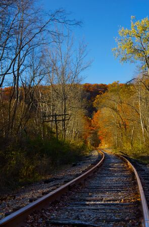 forest railroad: Railroad tracks in a rural forest. Stock Photo