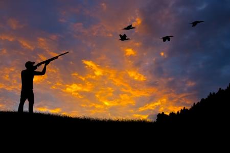 CODORNIZ: Silueta de un cazador con el objetivo de aves contra una puesta de sol por la noche