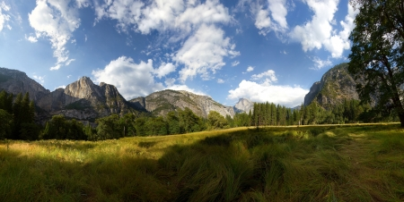 half dome: Half Dome From Ahwahnee Meadow at Yosemite National Park.