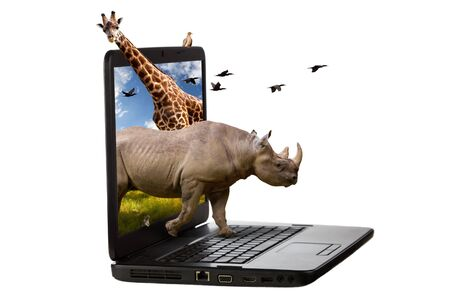 coming out: Rhinoceros, giraffe, squirrel and birds coming out of a laptop screen isolated on a white background