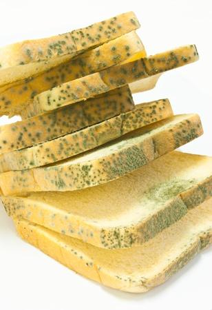 toxic waste: pan con moho que es perjudicial para su salud