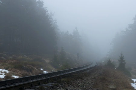 forest railroad: Old railroad with in forest on a foggy winter day in National park Harz, Germany