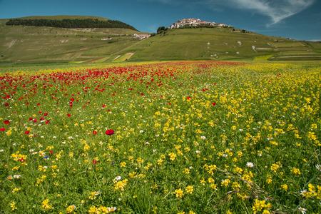 castelluccio di norcia: Stunning view in Castelluccio di Norcia
