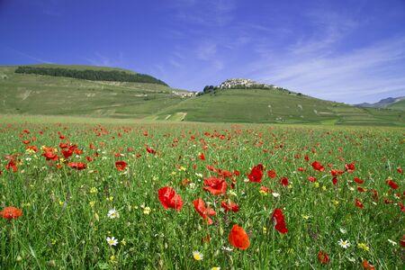 castelluccio: Stunning view in Castelluccio di Norcia