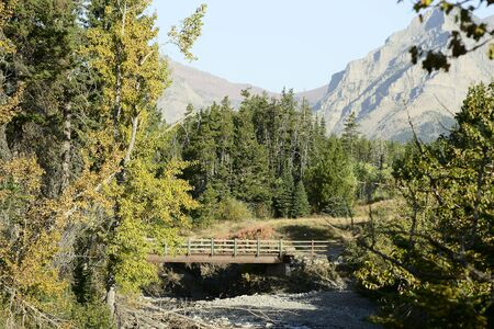 Bridge over stream.