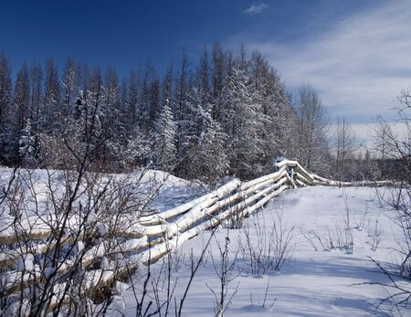 Winter fence on an old farm in Alberta
