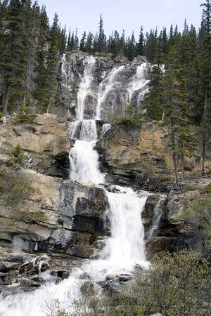 Tangle Creek Waterfalls in Jasper National Park. Stock Photo