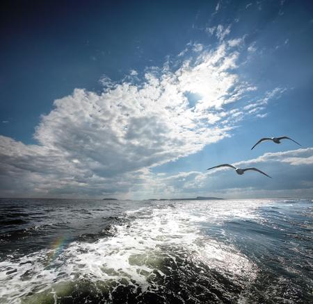 The White sea. The north of Russia. Stock Photo