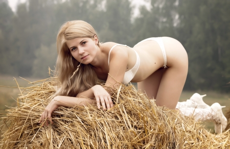 Young woman on a summer day among the straw. Stock Photo