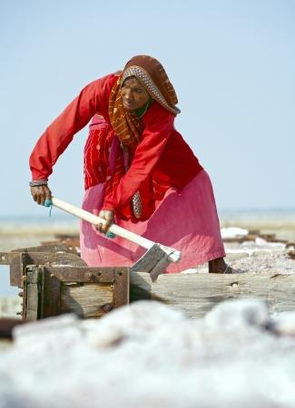 SAMBHAR LAKE TOWN-NOVEMBER 19: An unidentified Indian woman working on the salt farm, November 19, 2012, in Sambhar lake town, Sambhar salt lake, Rajasthan, India Stock Photo - 18017862