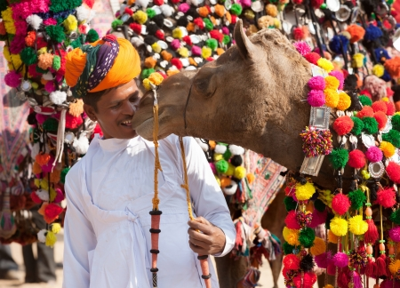 nomads: PUSHKAR, INDIA - NOVEMBER 22: Camel and his unidentified owner attends at traditional camel decoration competition at camel mela in Pushkar on November 22,2012 in Pushkar, Rajasthan, India