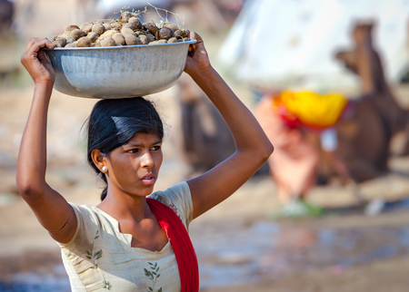 dung: PUSHKAR, INDIA - NOVEMBER 20, 2012: Young Indian woman carrying a basin on her head of camel dung collected for use as fuel at the annual camel fair in Pushkar, Rajasthan, India.