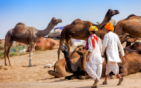 indian fair: Men in ethnic attire attends the Pushkar fair in Rajasthan, India. Farmers and traders from all over Rajasthan flock for the annual fair. Stock Photo