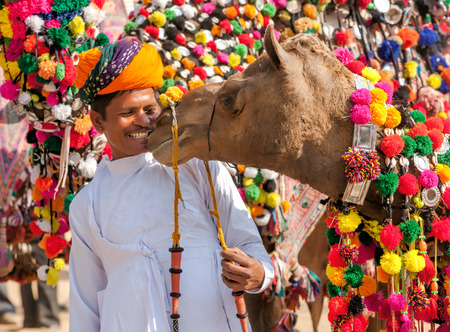 ethnic attire: PUSHKAR, INDIA - NOVEMBER 22: Camel and his unidentified owner attends at traditional camel decoration competition at camel mela in Pushkar on November 22,2012 in Pushkar, Rajasthan, India