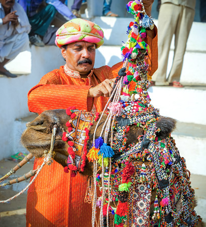 PUSHKAR, INDIA - NOVEMBER 20, 2012: unidentified Rajasthani Indian man decorates his camel at Pushkar Fair ( Pushkar Mela).  Farmers and traders from all over Rajasthan flock for the annual fair. Editorial
