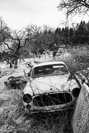 Old french car, rusted and damaged in nature in black and white photo