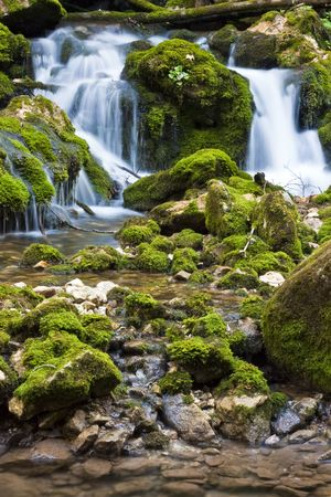 Waterfall in forest with moss on rocks Stock Photo