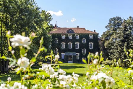 Country house with overgrown facade in garden with white flowers in Italy, Europe