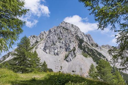 View from Maltschacher Alm to the Karawanks with mountain Bielschitza