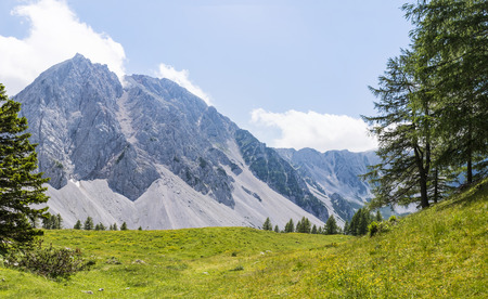 View from Maltschacher Alm to the mountain range Karawanks with mountain Hochstuhl