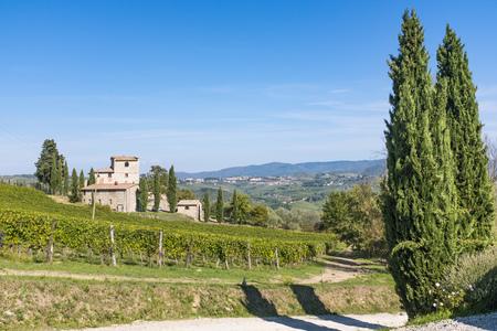 Old stone house in vineyard near Castellina in Chianti in Tuscany in Italy