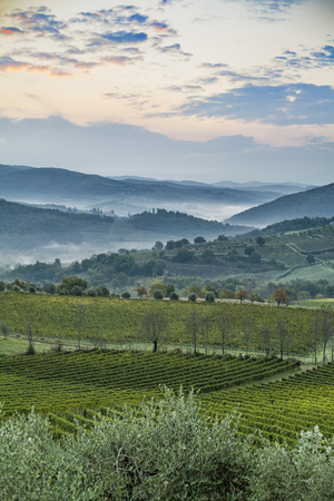 Beautiful sunrise over Castellina in Chianti with some fog between the hills with vineyards in Tuscany in Italy Stock Photo