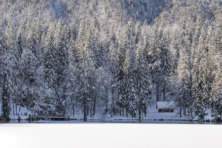 Small hut in forest in snowy winter on lake Fusine in Italy