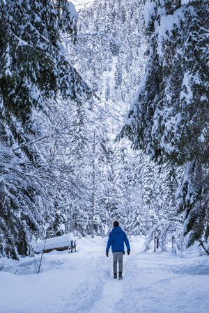 Man in blue jacket walking true snow covert forest on lake Fusine in Italy