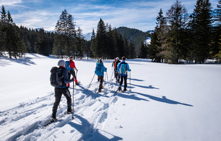 Group of adults snowshoeing thruogh a forest on snowy plateau Kaiserau with mountain Rottenmanner Tauern on a sunny winterday in Styria, Austria