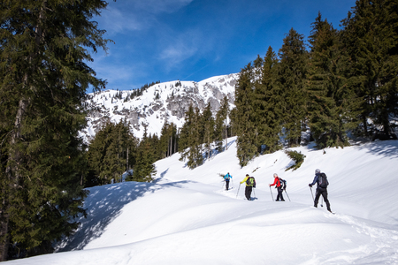 Group of adults snowshoeing thruogh a forest on snowy plateau Kaiserau with mountain Kreuzkogel on a sunny winterday in Styria, Austria
