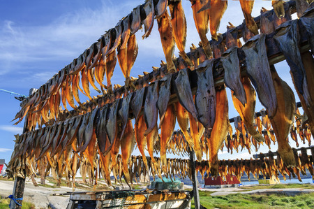settlement: Dried fish in Rodebay settlement, Greenland