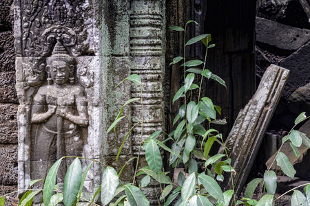 Bas-relief at Ta Prohm temple, Cambodia. Built in the Bayon style largely in the late 12th and early 13th centuries is in much the same condition in which it was found