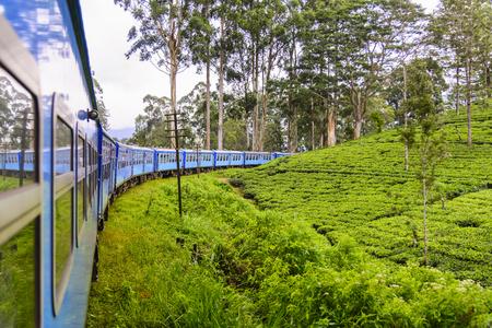 Een trein gaat door theeaanplanting in Nuwara Eliya-district, Sri Lanka. Theeproductie is een van de belangrijkste bronnen van deviezen voor Sri Lanka (voorheen Ceylon genaamd)