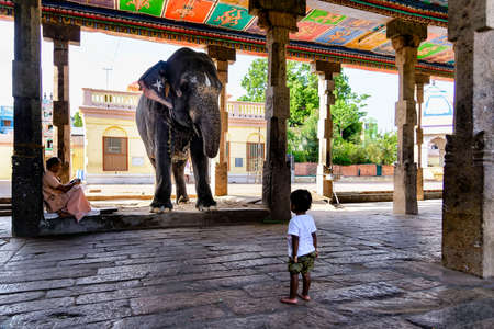 Kumbakonam, India - August 21, 2018: Curious child looks at the sacred elephant at the entrance of Adhi Kumbeshwarar hindu temple