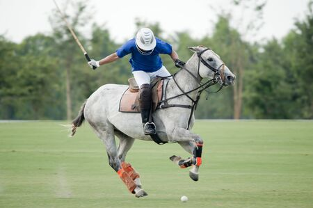 polo player: action player in polo