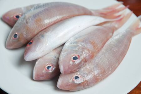 edible fish: Fresh raw fish on a plate.