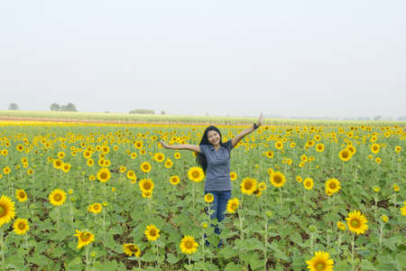 Women photographers are shooting in the garden sunflower Stock Photo - 9083029