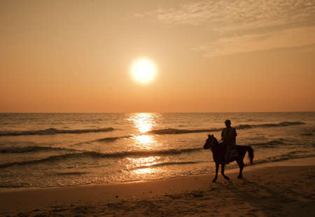 silhouette People ride horses.in sea on sunset  photo