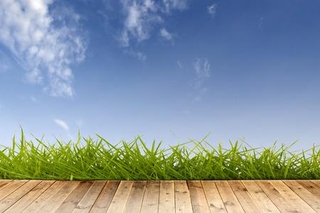Holzboden mit grünem Gras und blauen Himmel.  Standard-Bild - 9077108