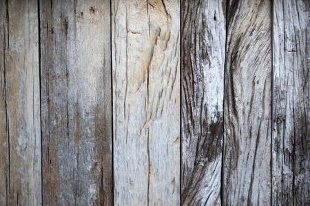 old macro: textura de madera con patrones naturales