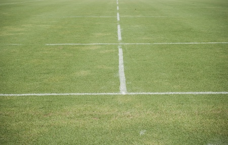 line of a soccer field  photo