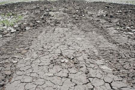 shrinkage: texture of shrinkage cracks