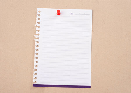 paper posted on a board with red tack pin. photo