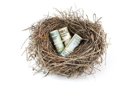 Birds nest with rolled money on a white background.