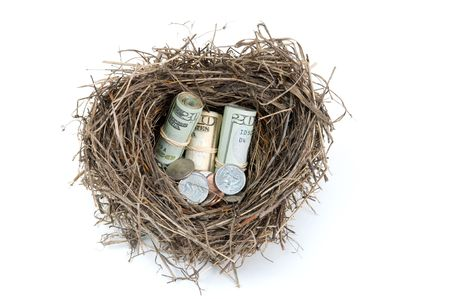 Birds nest filled with money on a white background.