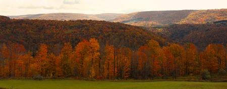 가을에 산