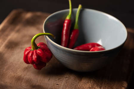 Hot chilli pepper concept. Trinidad Scorpion hanging from stem out of blue bowl and Thai cayenne peppers blurred inside bowl on wooden board. Assorted Fresh hot chilli. Food recipe or restaurant menu Stock Photo