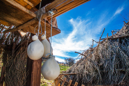 origen animal: Foto de un queso típico granja siciliana