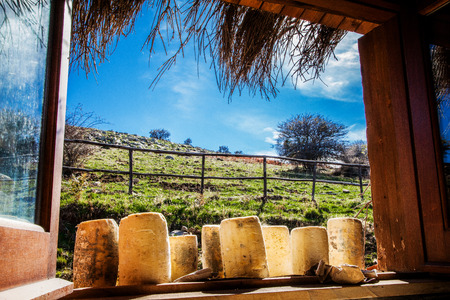 Photo of a typical Sicilian farmhouse cheese Banco de Imagens